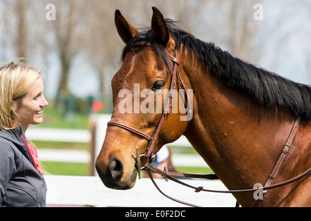 Blonde woman smiling and looking at Bay horse head wearing english snaffle bridle  with d-bit - Stock Photo