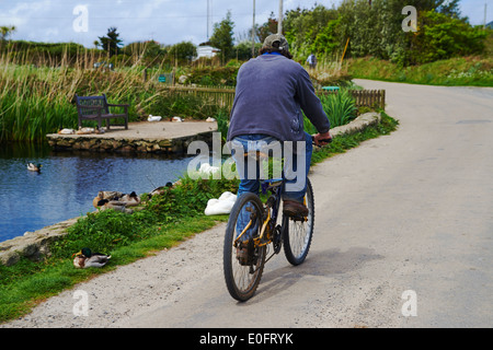 Man cycling along road on bike past ducks and pond at St Marys, Isles of Scilly, Scillies, Cornwall in April - Stock Photo