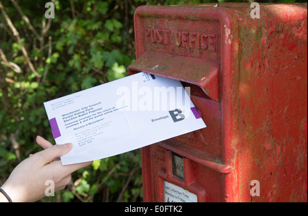 Postal vote envelope being placed into a letter box - Stock Photo