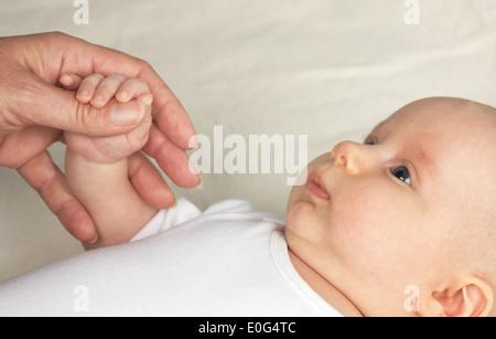 Women's hand and Baybfinger , Frauenhand und Baybfinger - Stock Photo
