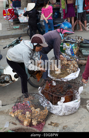 Caged Birds on Sale at Market in Old Town Hoi An - Stock Photo
