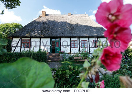 Traditional house with thatched roof and with garden, Baltic Sea, Middelhagen, Moenchgut Peninsula, Island of Ruegen, - Stock Photo