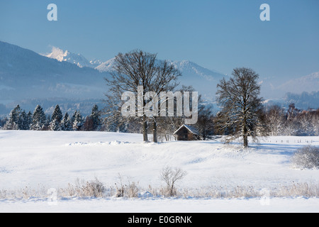 Winter scenery near Uffing at lake Staffelsee, Upper Bavaria, Bavaria, Alps, Germany - Stock Photo
