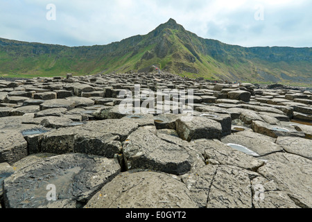Tourists exploring the Giant's Causeway, County Antrim, Northern Ireland, UK, a famous UNESCO World Heritage Site. - Stock Photo
