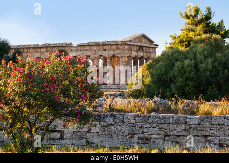 Poseidon Temple, Neptune Temple, historic town of Paestum in the Gulf of Salerno, Capaccio, Campania, Italy, Europe - Stock Photo