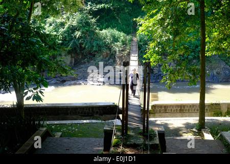 local man walking precariously over a rickety bridge at the purwodadi botanical gardens near malang east java indonesia - Stock Photo