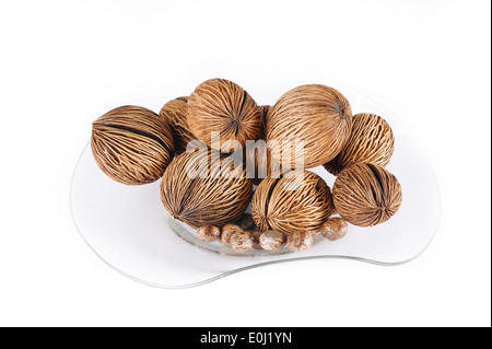 buy cerbera odollam seeds