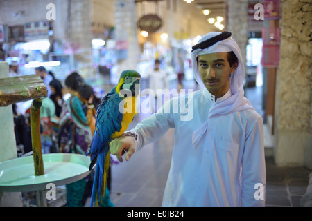 Doha. Qatar. Exotic birds for sale at Souq Waqif. - Stock Photo