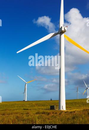 Windmills in North Kohala near Hawi on Big Island, Hawaii - Stock Photo