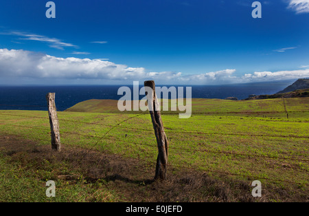 Fence posts, broken barb wire green pasture land Maui, Hawaii - Stock Photo