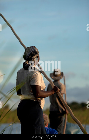 Poler on a traditional mokoro boat in the Okavango Delta, Botswana, Africa - Stock Photo