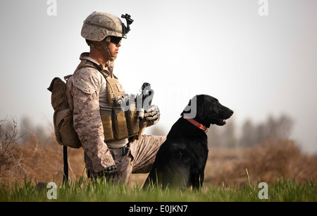 U.S. Marine Lance Cpl. Nick Lacarra, a dog handler with Combined Anti-Armor Team 2, Weapons Company, 3rd Battalion, - Stock Photo