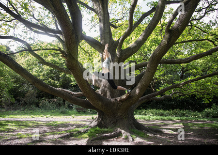 Blonde lady wearing black leggings and a grey crop practicing yoga in the centre of a tree on hampstead heath. - Stock Photo