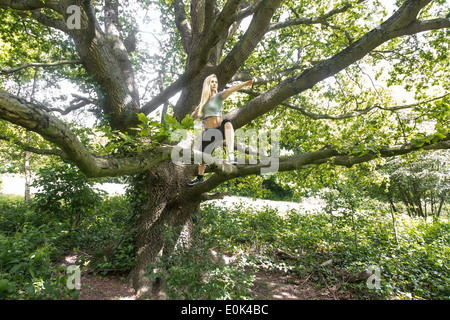 Blonde lady wearing black leggings and a grey crop top practicing yoga in a tree on hampstead heath. - Stock Photo