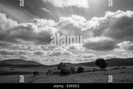 landscape black and white - Stock Photo