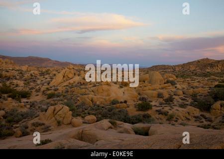 A sunset Joshua Tree National Park in Southern California, USA - Stock Photo
