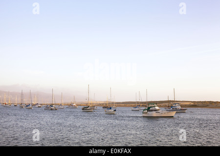 A group of sailboats anchored on the water in the evening light. - Stock Photo