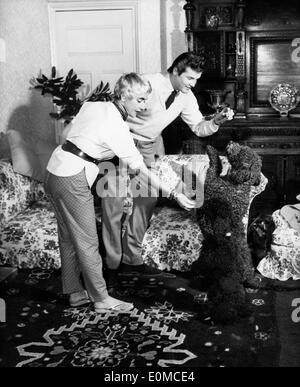 Actor Roger Moore and wife Dorothy Squires playing with their dogs - Stock Photo