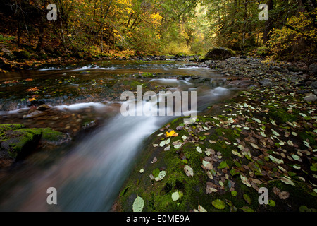 A long exposure blurs the waters of the Row River on a beautiful fall day Oregon, USA - Stock Photo