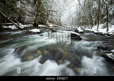 The icy waters of the Row River rush past snow-covered evergreen forests, Oregon, USA - Stock Photo