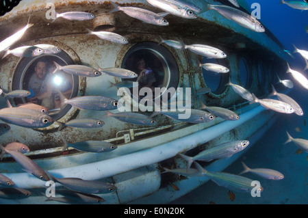 Tourists on Submarine Safaris' yellow sub underwater looking out of portholes at fish, Tenerife - Stock Photo