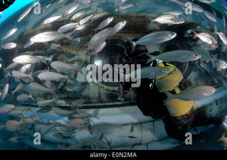 Yellow submarine on dive underwater with scuba diver outside looking in porthole with sea bream fish, Tenerife - Stock Photo