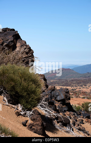 Tenerife, lava covered landscape of the area around Mt Teide - Stock Photo