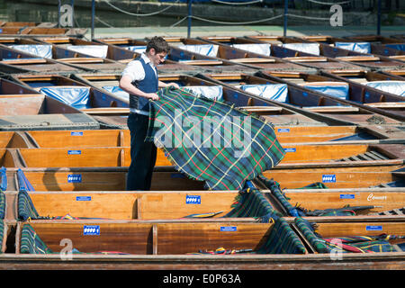 Cambridge UK , 18th May 2014. Staff at Scudamore's Boatyard prepare the punts for a busy Sunday punting on the River - Stock Photo