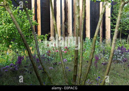 the cloudy bay sensory garden at rhs chelsea flower show designed by andrew