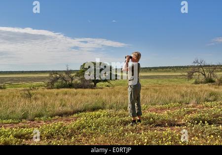tourist watching area in Kgalagadi Transfrontier Park, Mabuasehube Section, Kalahari, South Africa, Botswana, Africa - Stock Photo