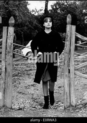 Actress Edy Farinelli at stables - Stock Photo