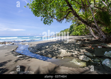 Small creek emerging onto the Pacific beach of the Corcovado National Park in Costa Rica - Stock Photo
