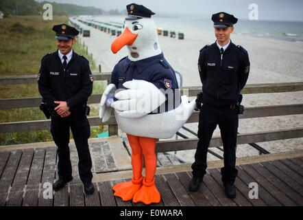 Boltenhagen, Germany. 19th May, 2014. Police seagull 'Klara' stands between police officers Ehlert (R) and Schroeder - Stock Photo