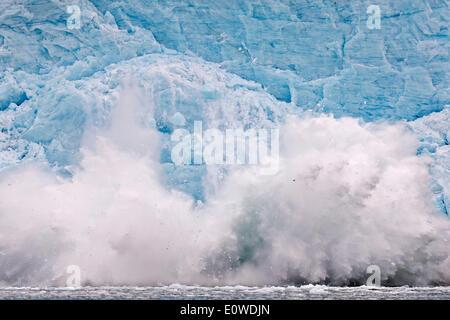 Calving glacier, rim of the Monacobreen Glacier, Liefdefjorden, Spitsbergen, Svalbard Islands, Svalbard and Jan Mayen, Norway