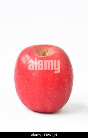 Domestic Apple (Malus domestica), variety: Cripps Pink, fruit, studio picture. - Stock Photo