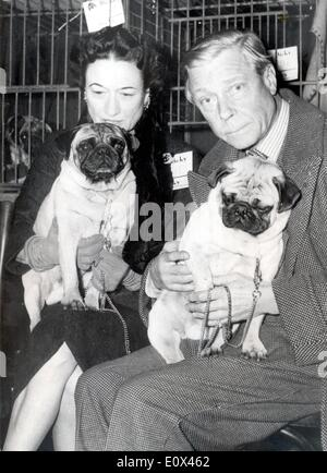 Duke and Duchess of Windsor after a dog show - Stock Photo