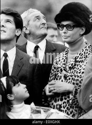 Actress Sophia Loren at a football game - Stock Photo