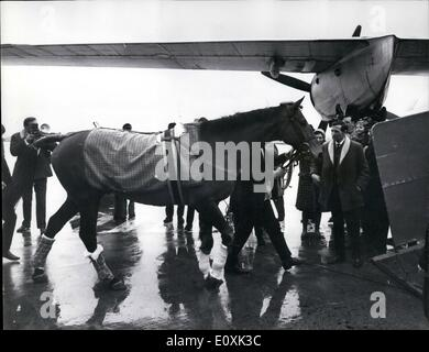 Feb. 02, 1967 - Arkle Goes Home: Wonder horse Arkle yesterday went home to Ireland. It was ARkle's first outing - Stock Photo