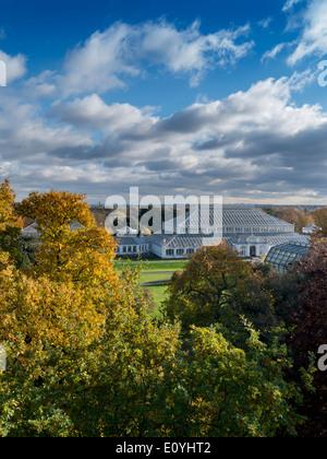 Europe, UK, England, London, Kew Gardens Temperate House autumn - Stock Photo