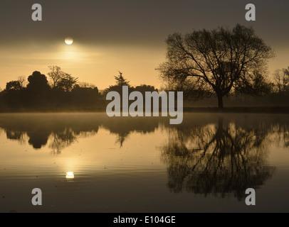Leg of Mutton Pond at sunrise, Bushy Park, London, UK - Stock Photo