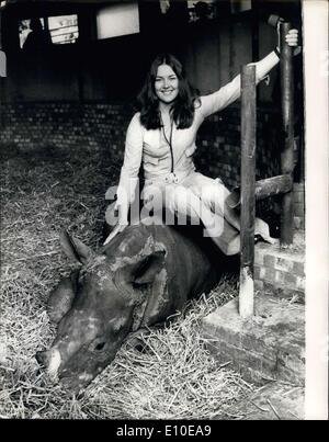 Aug. 08, 1972 - Rhinos Who Beat the Dock Strike on Show at Windsor Safari Park: London Dockers were yesterday allowed - Stock Photo