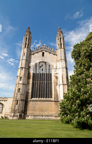 Kings College Chapel, Cambridge UK in spring with the horse chestnut tree, Cambridge UK - Stock Photo