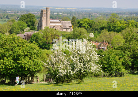 Bucks - Chiltern Hills - Ellesborough - view high on Beacon Hill  fields+ hedges to church - spring sun - walker - Stock Photo