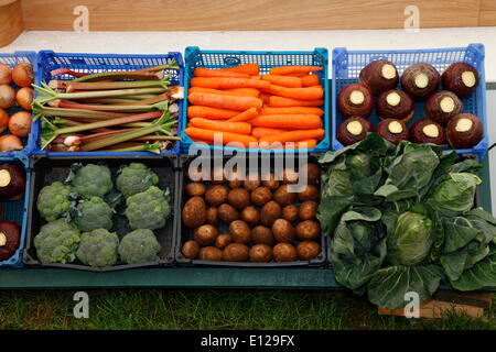 Exeter, Devon, UK. 21st May, 2014. Vegetables on display Devon County Show Press Preview Day - Stock Photo