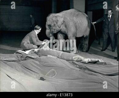 Feb. 29, 2012 - Can AN Elephant Blow Up A Tent?: In fact, he could by inflated poles which are formally blown up - Stock Photo