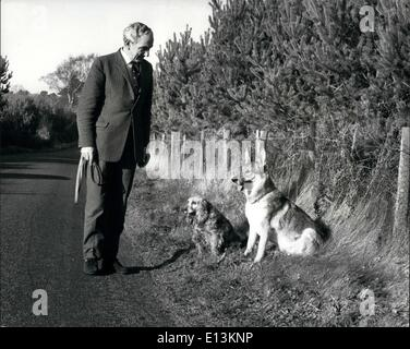 Mar. 02, 2012 - A FRIEAD IN NEED 'Minky' the spaniel and 'Simba' the alsatian, the two pets of Mr. Esme Bidlake - Stock Photo
