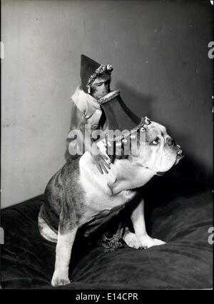 Apr. 17, 2012 - Lampshade hat fashion: Jenny, the Rhesus monkey, climbs on to her pal, Rocky the Bulldog's shoulders, - Stock Photo