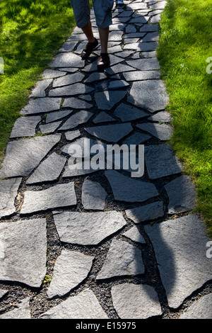 Path and stone in grassy green lawn - Stock Photo