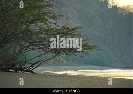 Black sand beach at Papagayo Bay. - Stock Photo