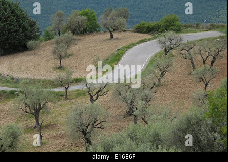 View of a winding road in Sierra Del Montsec region in Province of Lleida at the western part of the autonomous - Stock Photo
